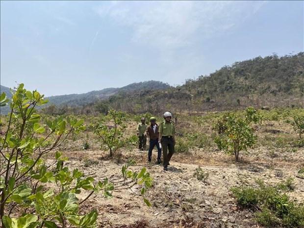 Cán bộ kiểm lâm phối hợp với tổ cộng đồng làng Ia Ke, xã Ia Phang (Chư Pưh) tuần tra bảo vệ rừng trên địa bàn. Ảnh: Hoài Nam – TTXVN