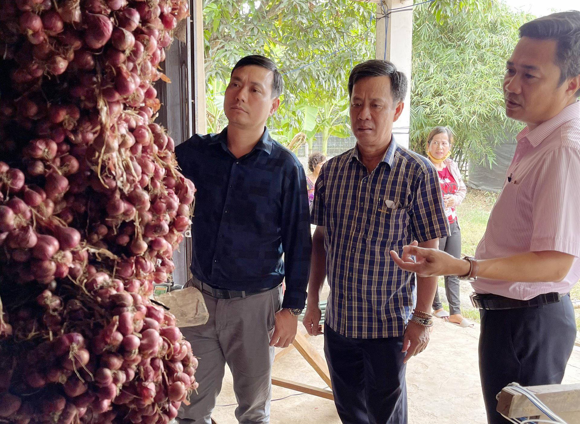 Lãnh đạo Chi nhánh NHCSXH Sóc Trăng trực tiếp về địa phương để có phương án hỗ trợ tối ưu cho người trồng hành tím