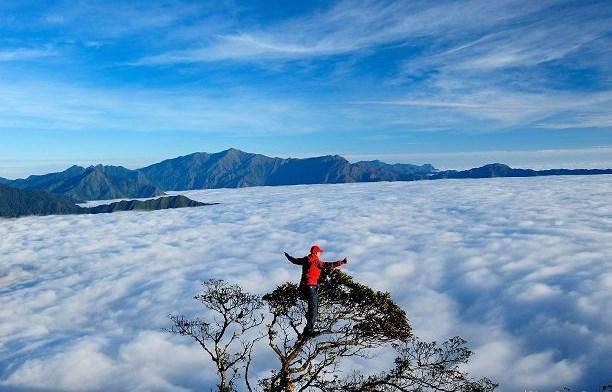 Biển mây bồng bềnh quanh những triền núi trên đỉnh Tà Xùa