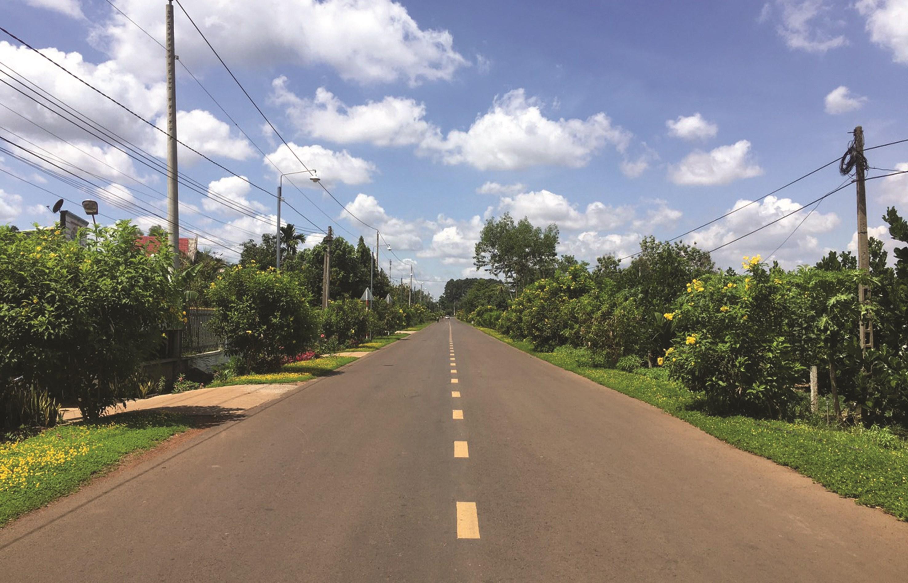 Một tuyến đường kiểu mẫu ở vùng nông thôn Xuân Lộc.
