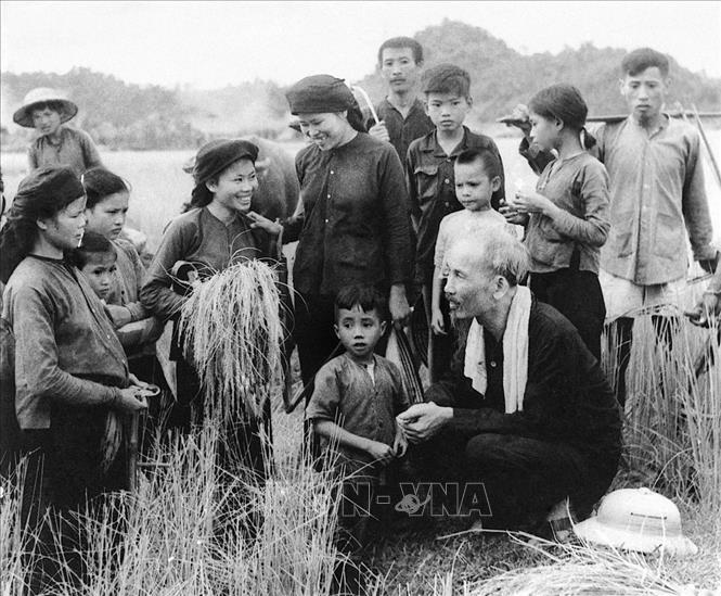 Bác Hồ thăm nông dân hợp tác xã Hùng Sơn, huyện Đại Từ, tỉnh Thái Nguyên gặt lúa mùa (1954). Ảnh: Tư liệu/TTXVN