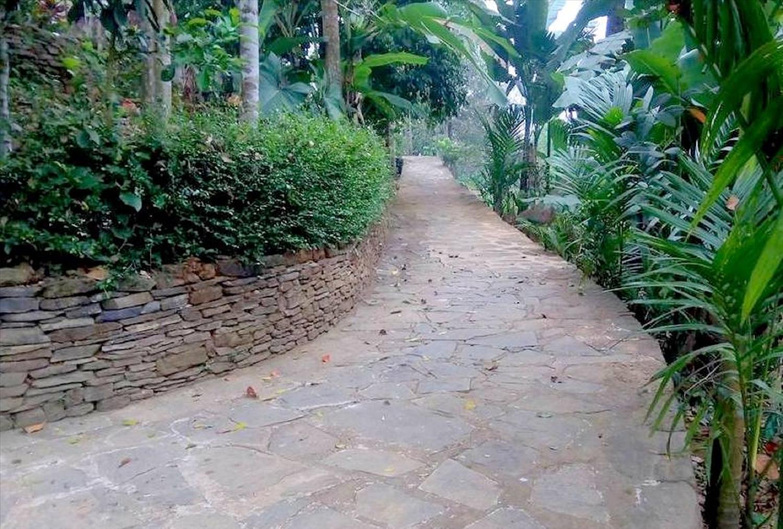 Vẻ đẹp của ngõ đá cổ kính, rêu phong tại làng cổ Lộc Yên.