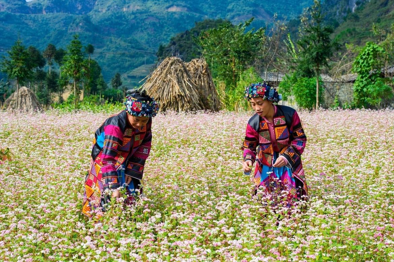 Hà Giang luôn thu hút khách du lịch tới thăm quan
