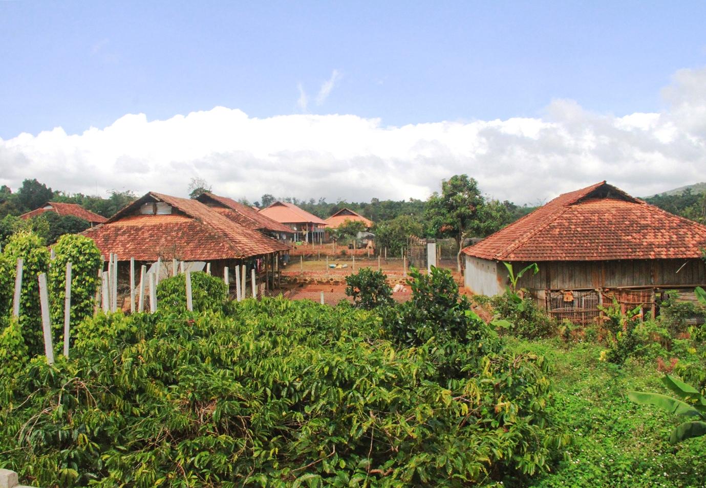 Nhà sàn của đồng bào Nùng huyện Krông Năng, Đắk Lắk