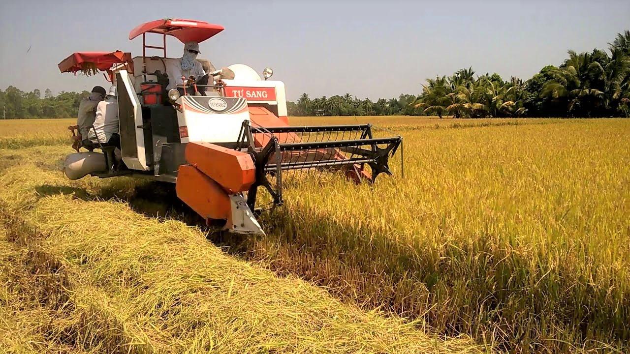 Cơ giới hóa trong sản xuất giúp đẩy nhanh tiến dộ sản xuất, thu hoạch, giải phóng bớt sức lao động cho người nông dân