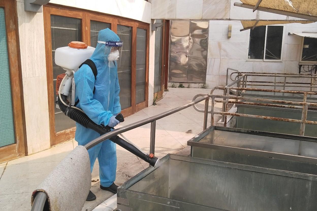 Phun hóa chất diệt côn trùng là một trong những giải pháp phòng bệnh hiệu quả (Ảnh: Tư liệu)