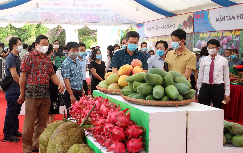 Người dân tham quan và mua các sản phẩm nông nghiệp