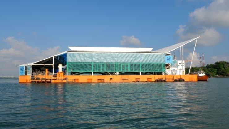 Eco-Ark là một trang trại nuôi cá nổi khép kín nằm ngoài khơi bờ biển Singapore, sản xuất hơn 160 tấn cá mỗi năm