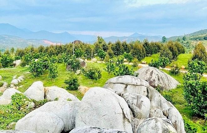 Mảnh đất đồi tại tỉnh Lâm Đồng đang được trồng trái cây có giá hàng tỷ đồng (Ảnh: Đ.V).