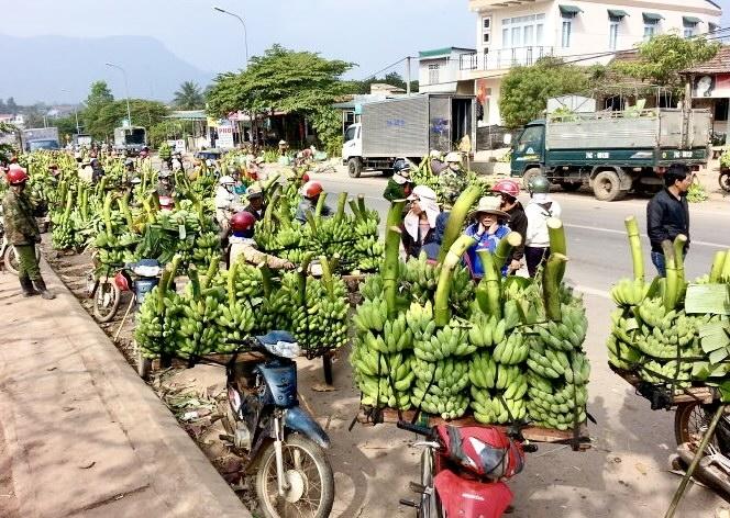 Theo Quyết định 934/QĐ-TTg, phạm vi nghiên cứu lập quy hoạch có diện tích khoảng 8,2 ha, thuộc địa phận phường 2, thành phố Đông Hà, tỉnh Quảng Trị