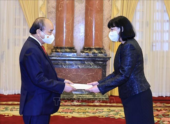 Chủ tịch nước Nguyễn Xuân Phúc tiếp Đại sứ Romania, bà Cristiana Romila. Ảnh: Thống Nhất/TTXVN