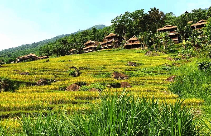 Những ngôi nhà sàn của đồng bào Mường thấp thoáng bên sườn núi Pù Luông.