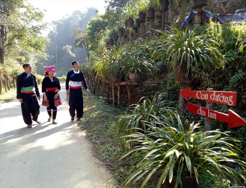 Đến với Tô Y Phìn, du khách được khám phá con đường địa lan