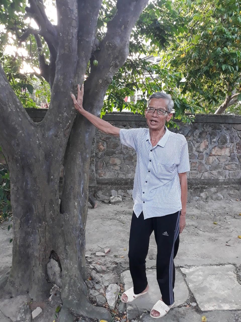 Cụ Võ Đại Hàm kể về năm tháng tuổi thơ của Đại tướng bên cây khế trăm tuổi