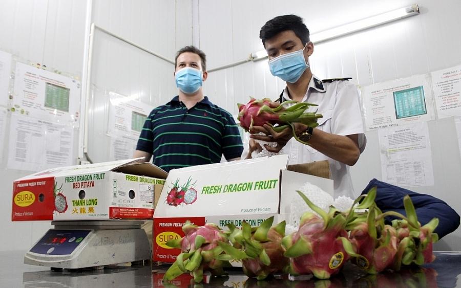 Việt Nam đã chính thức được cấp phép xuất khẩu 6 loại hoa quả tươi sang Hoa Kỳ gồm xoài, nhãn, vải, thanh long, chôm chôm, và vú sữa