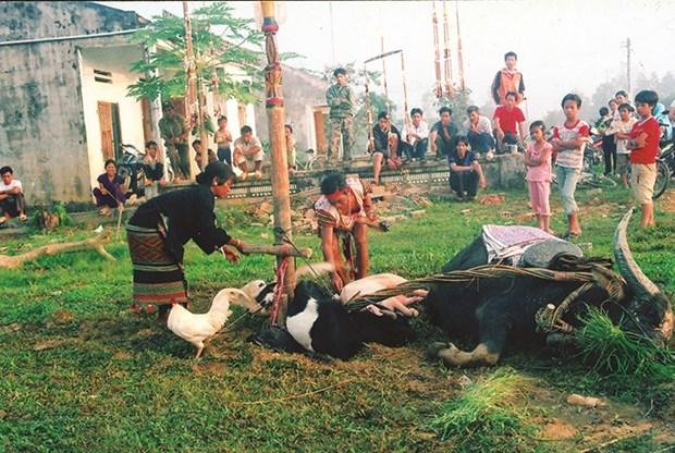 Chủ nhà và khách cùng quây quần bên ché rượu cần trong lễ hội kết bạn của người Mạ. Trâu, lợn, dê… là những con vật hiến tế thần linh trong lễ hội. Ảnh: Chu Quốc Hùng