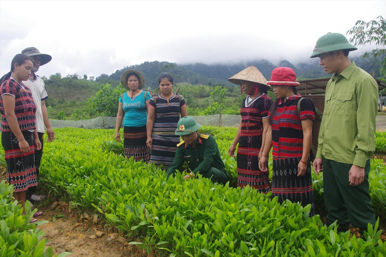 Cán bộ, nhân viên Đội sản xuất 1 hướng dẫn bà con thôn Tru Chai, xã Đông Sơn kỹ thuật chăm sóc keo giống