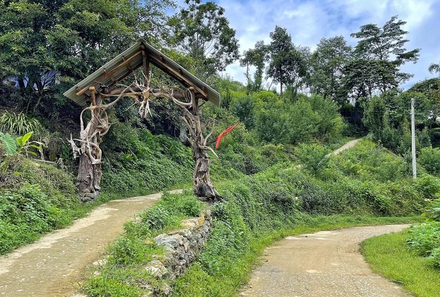 Nhờ mở cửa đón du khách và phát triển giống hoa địa lan địa phương, mỗi hộ dân ở đây đều có thu nhập từ 30-50 triệu đồng/năm. (Ảnh: Xuân Mai/Vietnam+)