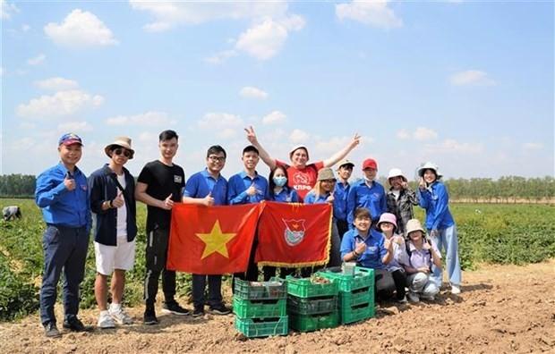 Nhóm sinh viên Việt Nam với thành quả thu hái được tại hoạt động tình nguyện quốc tế. (Nguồn: TTXVN)