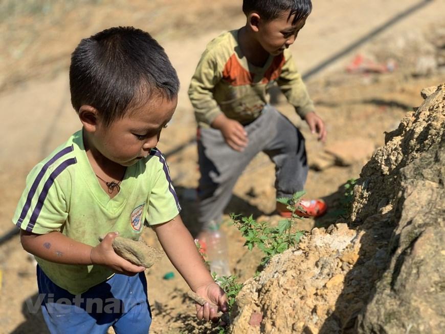 Còn những đứa trẻ ở Y Tý (Lào Cai) ít điều kiện hơn thì dù có trưa nắng chói chang cũng rủ nhau ra đồng đào hang dế...