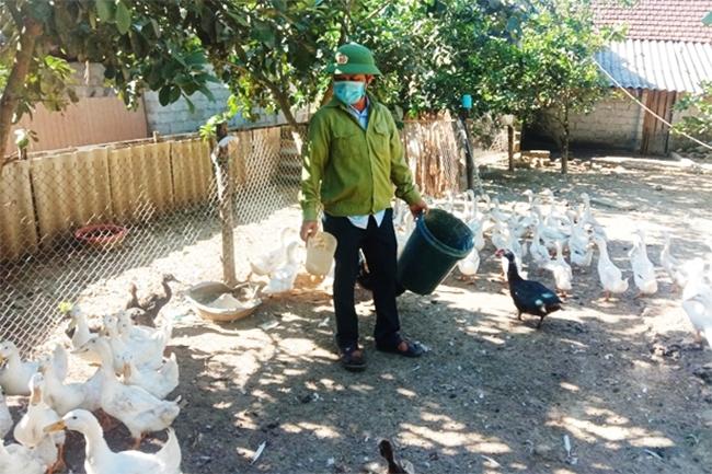 Ông Nguyễn Đức Hải (thôn Hội Trung, xã Đức Liên) phát triển chăn nuôi từ nguồn vốn Quỹ Hỗ trợ nông dân
