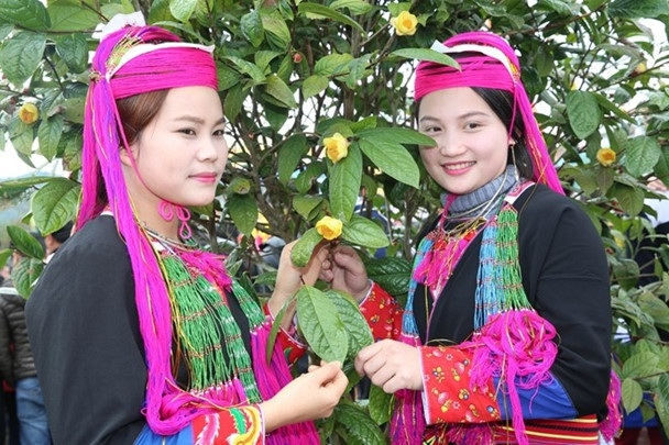 Lễ hội trà Hoa vàng đã được huyện Ba Chẽ tổ chức lần đầu tiên vào đầu năm 2016 (ảnh báo Quảng Ninh)