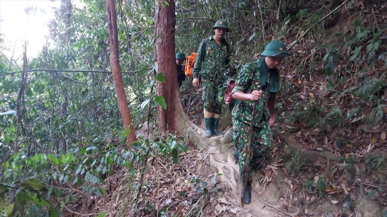 Lực lượng chức năng tuần tra bảo vệ rừng