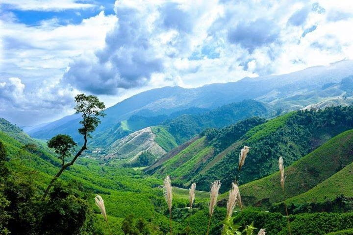 Cảnh sắc thiên nhiên tuyệt đẹp của núi rừng A Lưới