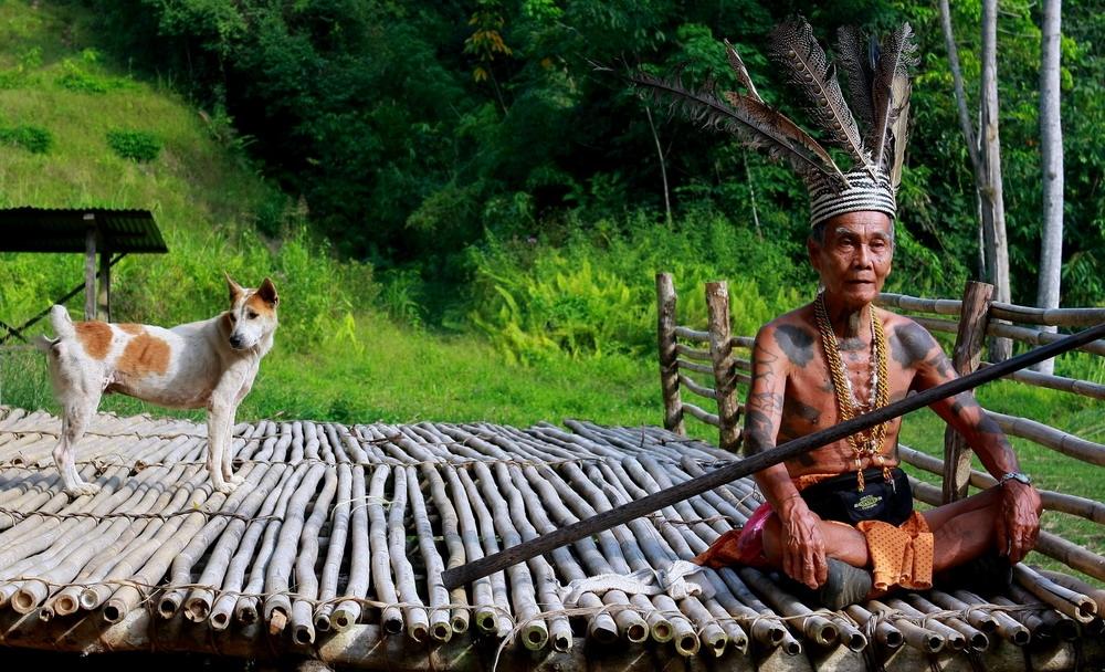 người Dayak sống bằng nghề làm ruộng lúa nước ven sông, làm rẫy, trồng cọ trên những ngọn đồi thấp và thuần dưỡng các con vật nuôi...