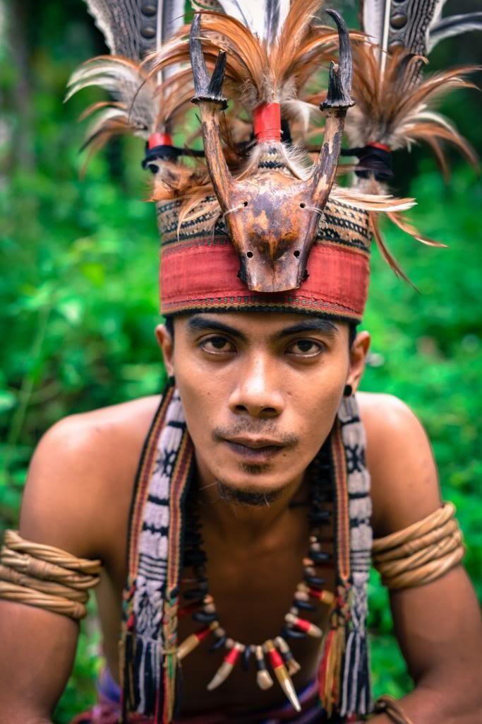 Người Dayak đội mũ lông chim và đeo rất nhiều đồ trang sức