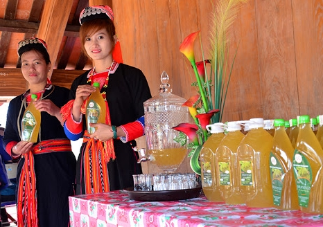Phu nữ Dao Thanh Y giới thiệu đặc sản rượu bâu