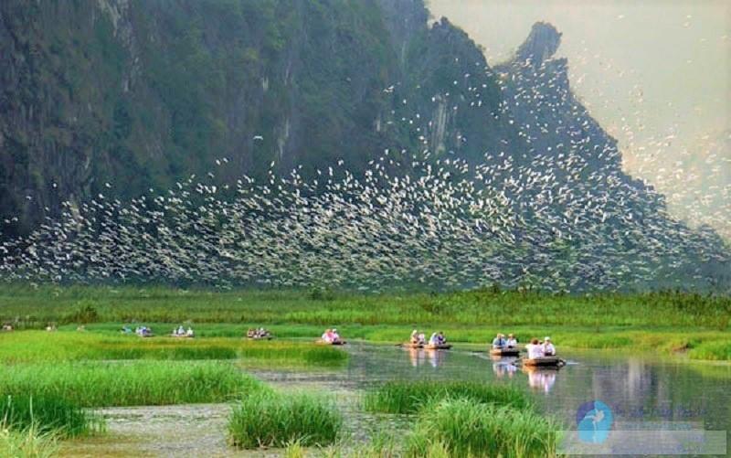 Khám phá Thung Nham- xứ sở của các loài chim 6
