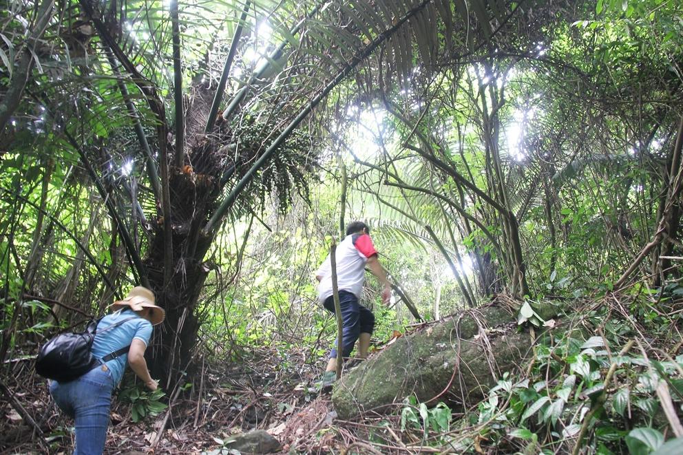 Hành trình xuyên rừng lên núi Bát Nhã