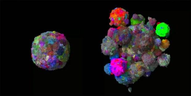 Mô hình 3D cho thấy khối u phát triển và biến đổi như thế nào theo thời gian.Ảnh: genk.vn