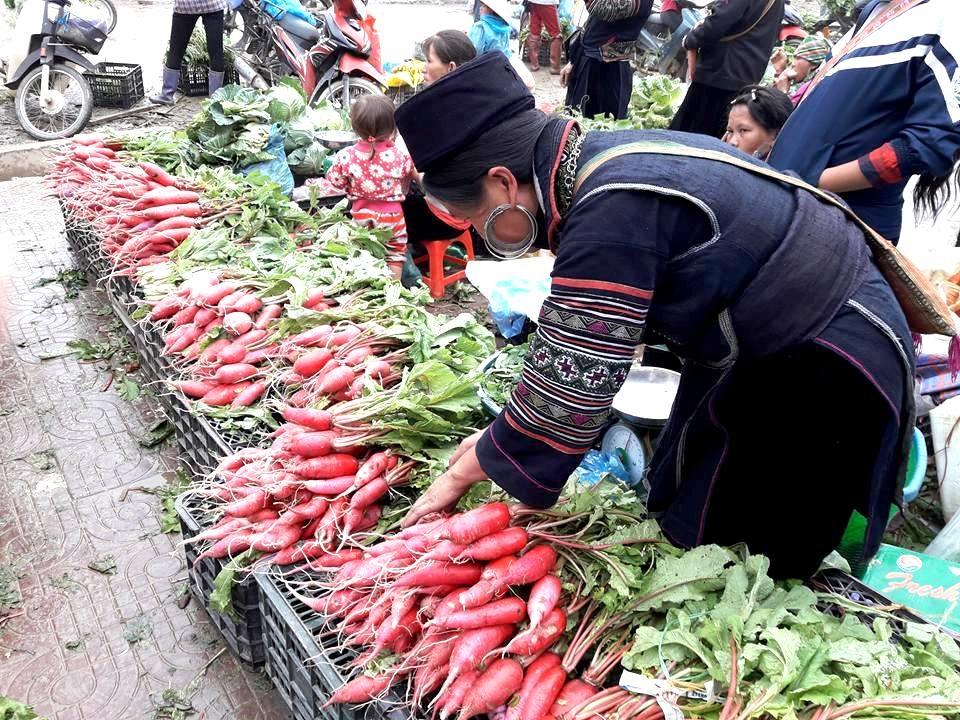 Đặc sản củ cải đỏ ở chợ phiên Tây Bắc