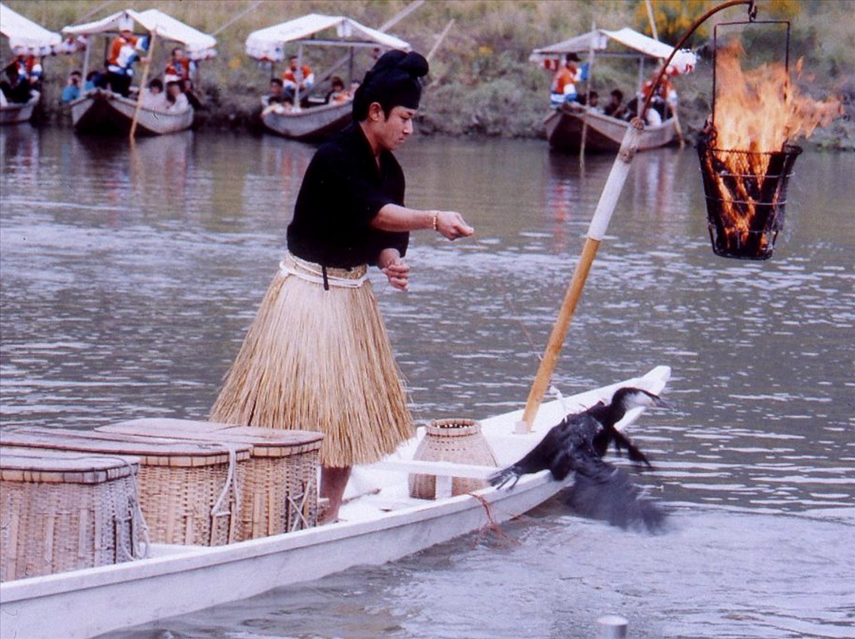 """Chim cốc được buộc dây để dễ dàng đưa lên thuyền khi """"săn"""" được cá"""