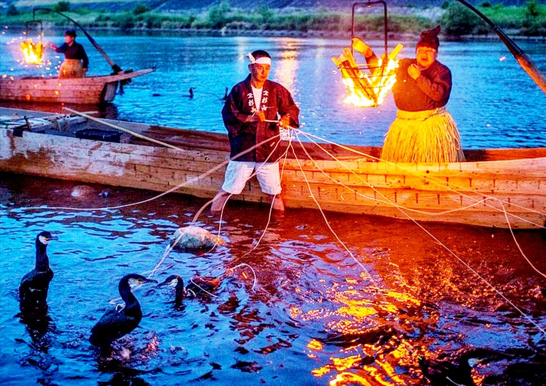 Việc đánh bắt cá diễn ra vào ban đêm