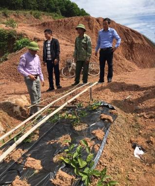 Ông Vi Thanh Quyền (ngoài cùng bên phải), Trưởng Ban Dân tộc tỉnh Bắc Giang kiểm tra mô hình trồng dược liệu tại xã Thanh Luận, huyện Sơn Động (Ảnh chụp trước ngày 27/4/2021)