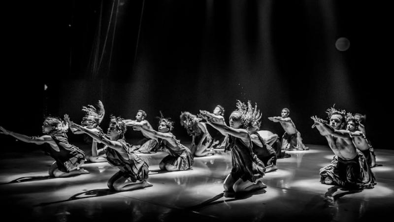"""Nghệ sĩ múa tích cực """"nhập cuộc"""" phòng chống dịch (ảnh minh họa: Tuyết Minh)"""