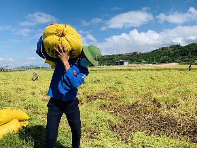 Thanh niên tình nguyện vận chuyển lúa cho bà con vùng cách ly xã hội