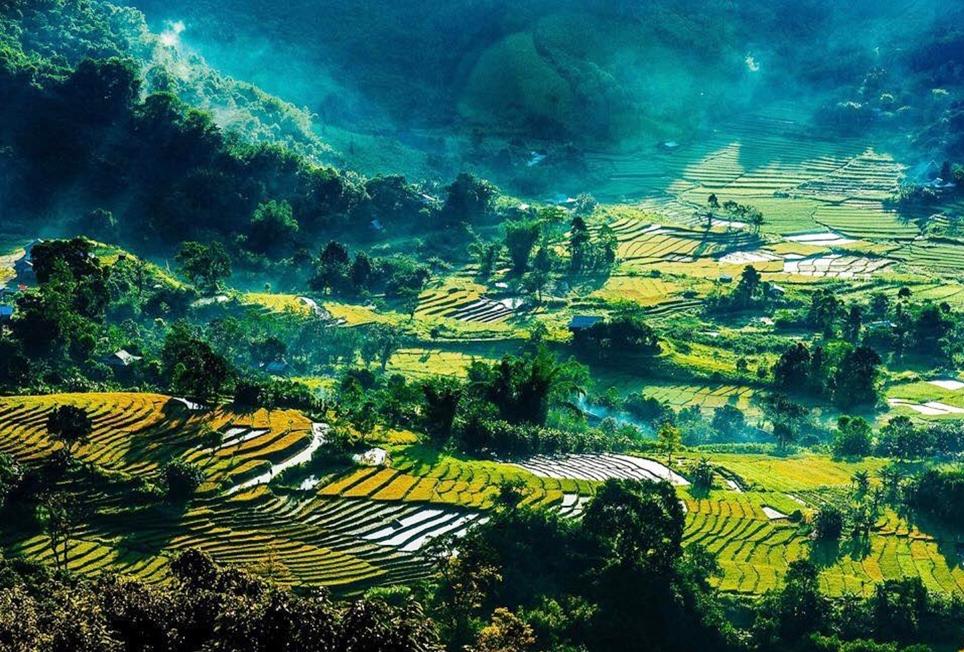 Những cánh đồng lúa nước ở A Xan, Ch'ơm