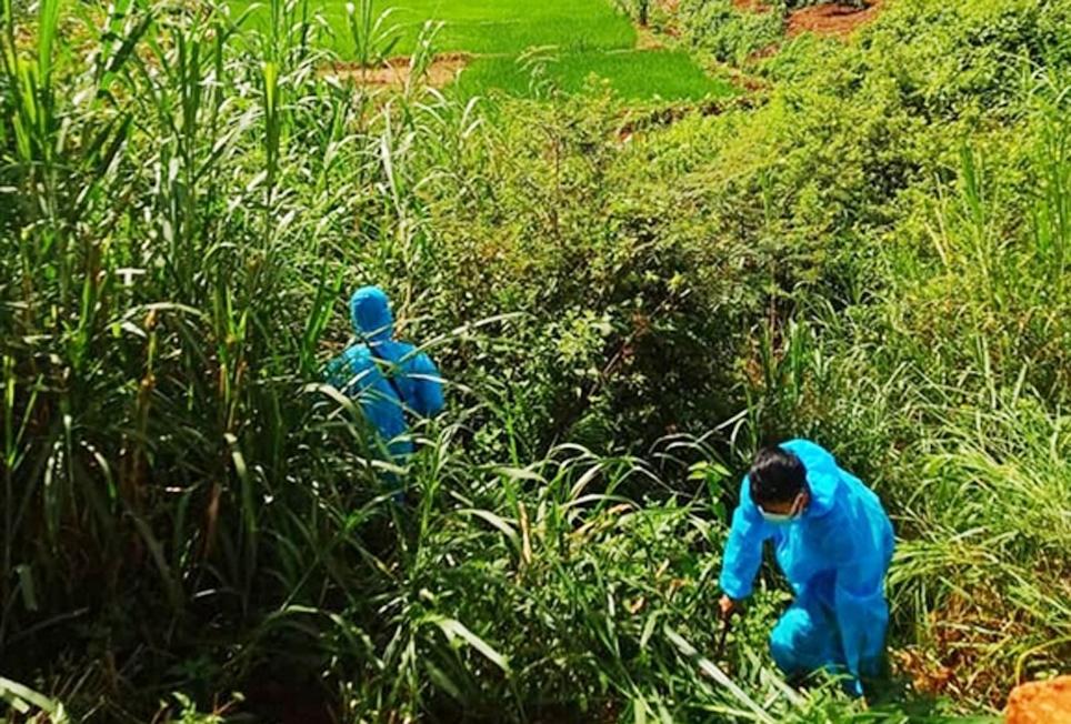 Lực lượng chức năng giúp dân chăm sóc cây trồng tại huyện Krông Búk