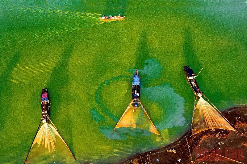 Vào mùa nước cạn, những chiếc thuyền đánh bắt thủy sản trên hồ Trị An được ngư dân đưa neo đậu quanh ở khu vực Bến Nôm, tạo ra khung cảnh nên thơ