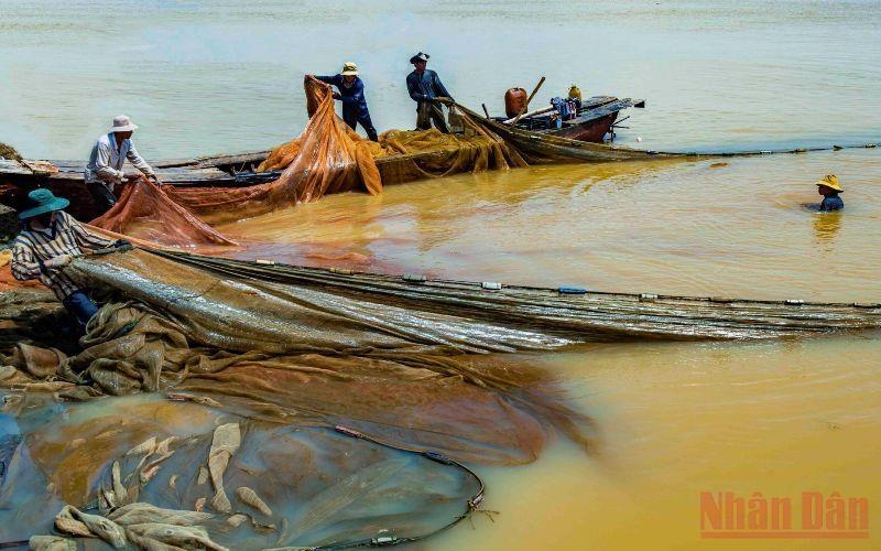 Khi nước cạn, việc kéo lưới để bắt thủy sản của ngư dân mưu sinh trên hồ thực hiện dễ dàng hơn