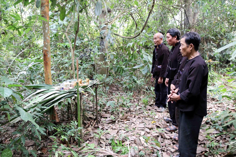 Nghi lễ cúng rừng, nét văn hóa độc đáo lâu đời của dân tộc Lự ở Lai Châu. (Ảnh chụp trước ngày 27/4/2021)