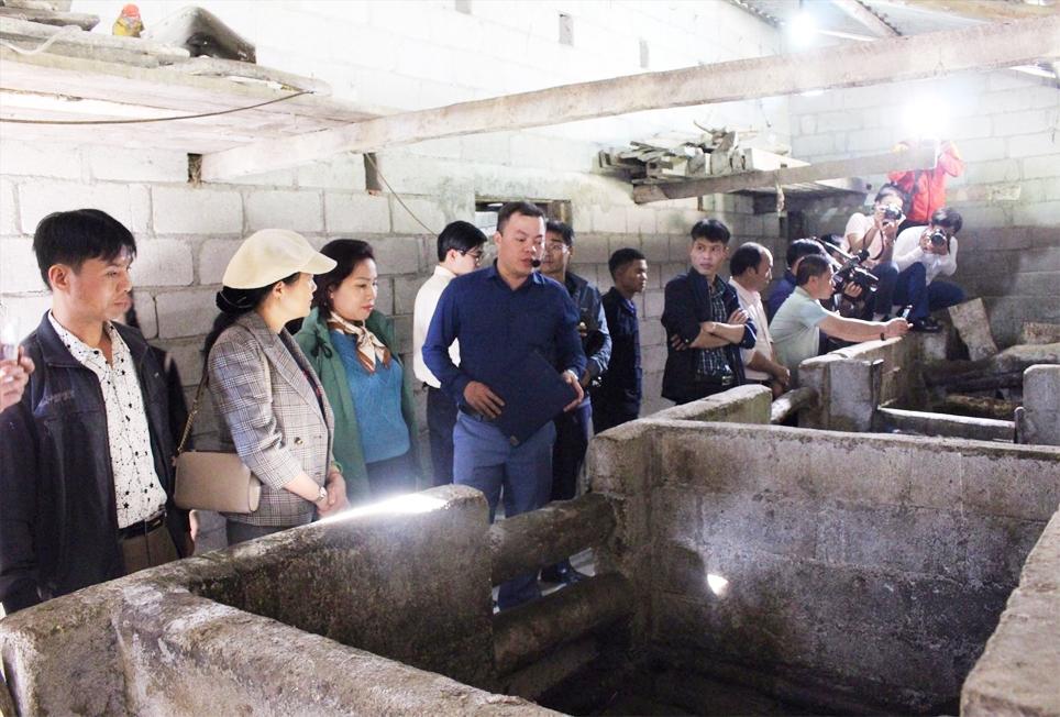 Đoàn cán bộ Khuyến nông tham mô hình nuôi lợn ở Mèo Vạc