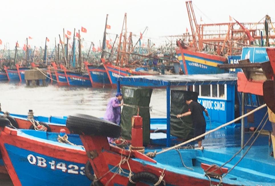 Tàu thuyền của ngư dân Quảng Bình được chằng chéo cẩn thận trú tránh bão số 5