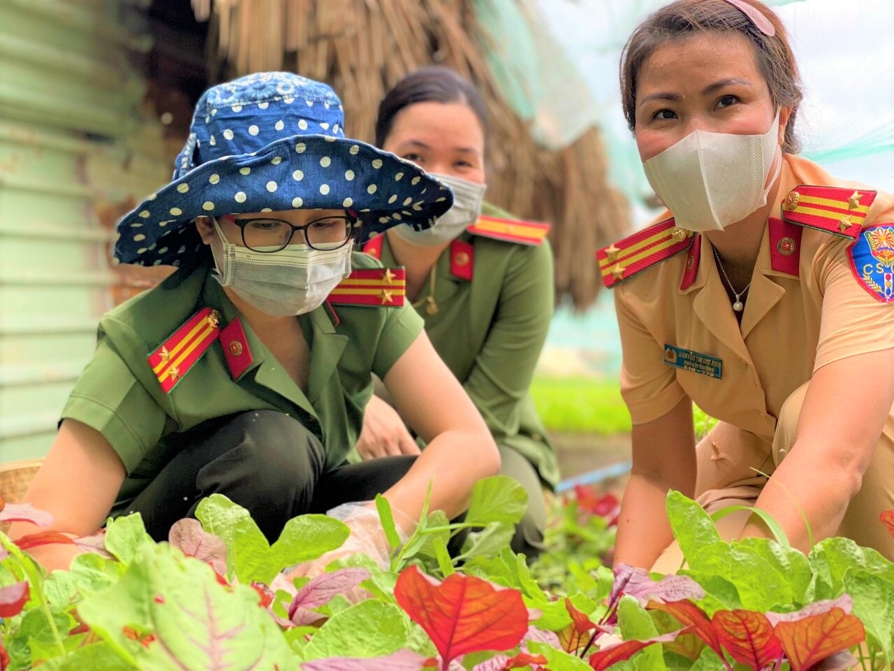 """Tuổi trẻ Công an tỉnh Bình Phước đến từng nhà vườn quyên góp rau xanh để gửi đến """"tâm dịch"""" Bình Dương."""