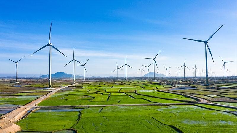 Một dự án điện gió tại Ninh Thuận