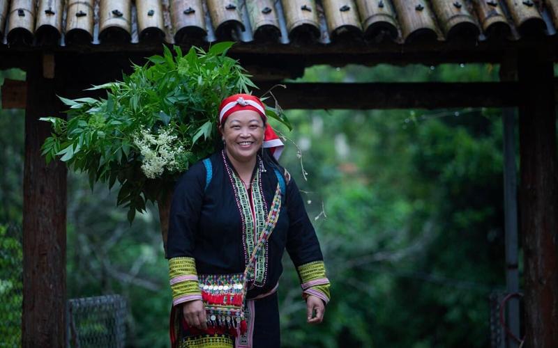 Chị Tẩn Tả Mẩy chuẩn bị nguyên liệu từ các cây dược liệu của người Dao